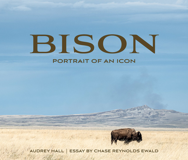 Bison - Portrait of an Icon - cover