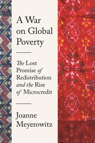 A War on Global Poverty - The Lost Promise of Redistribution and the Rise of Microcredit - cover