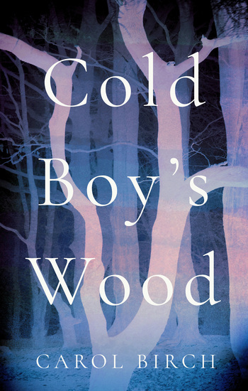 Cold Boy's Wood - cover