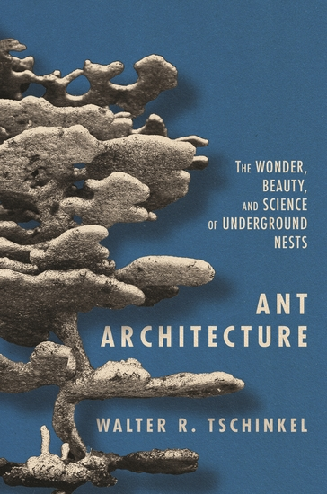 Ant Architecture - The Wonder Beauty and Science of Underground Nests - cover