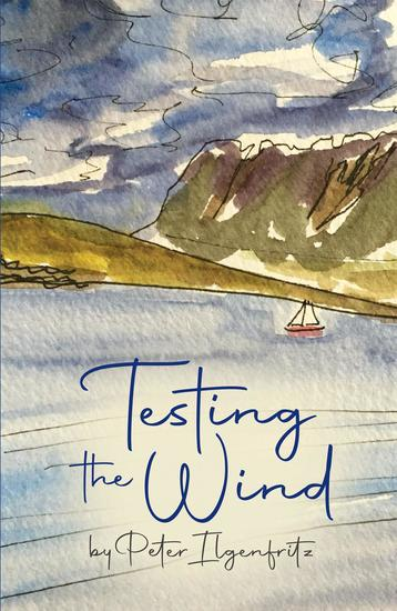 Testing the Wind - cover