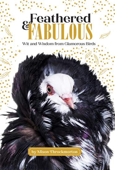 Feathered & Fabulous - cover