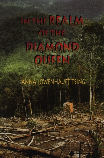 In the Realm of the Diamond Queen - Marginality in an Out-of-the-Way Place - cover