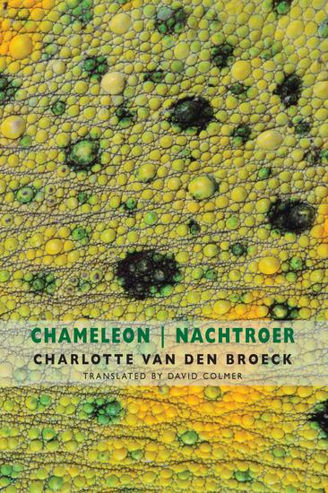 Chameleon   Nachtroer - cover