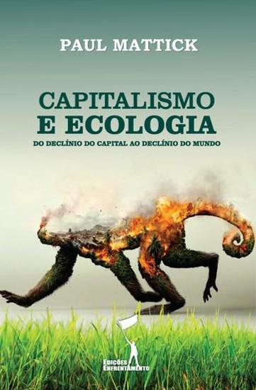 Capitalismo e Ecologia - Do Declínio do Capital ao Declínio do Mundo - cover