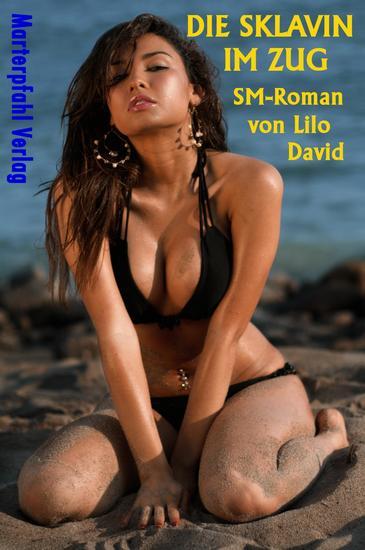 Die Sklavin im Zug - SM-Roman - cover