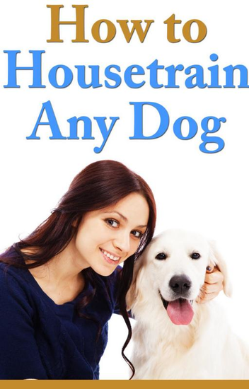 How To Housetrain Any Dog - cover