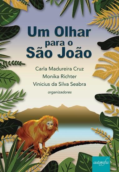 Um olhar para o São João - cover