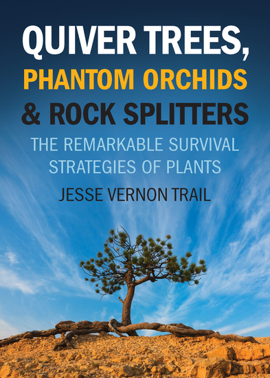 Quiver Trees Phantom Orchids & Rock Splitters - The Remarkable Survival Strategies of Plants - cover