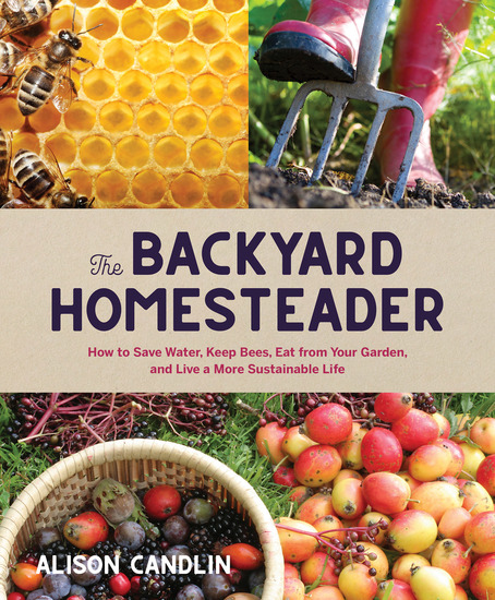 Backyard Homesteader - How to Save Water Keep Bees Eat from Your Garden and Live a More Sustainable Life - cover