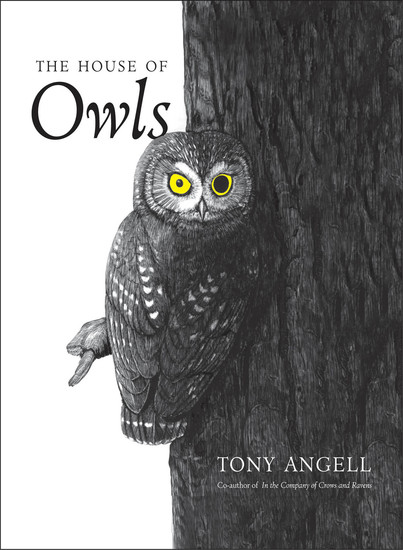 The House of Owls - cover