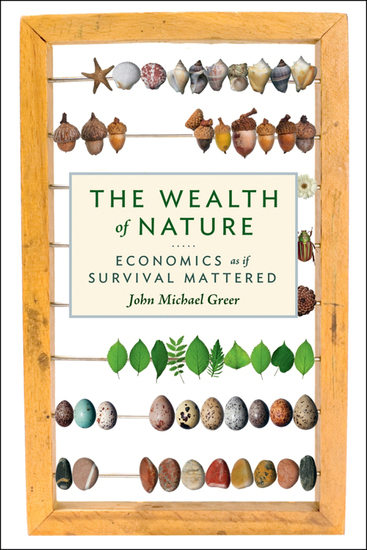 The Wealth of Nature - Economics as If Survival Mattered - cover