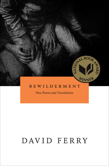 Bewilderment - New Poems and Translations - cover