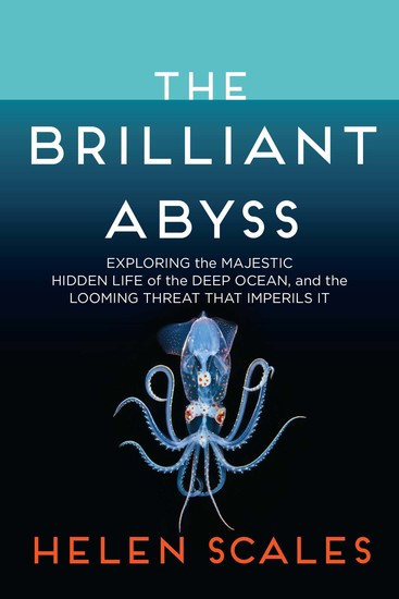 The Brilliant Abyss - Exploring the Majestic Hidden Life of the Deep Ocean and the Looming Threat That Imperils It - cover