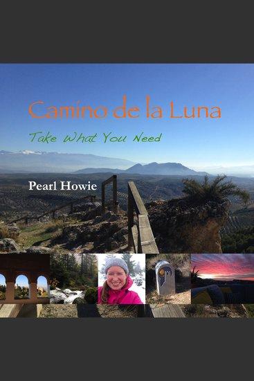 Camino de la Luna - Take What You Need - cover