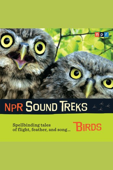 NPR Sound Treks: Birds - Spellbinding Tales of Flight Feather and Song - cover