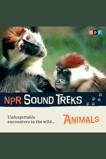 NPR Sound Treks: Animals - Unforgettable Encounters in the Wild - cover