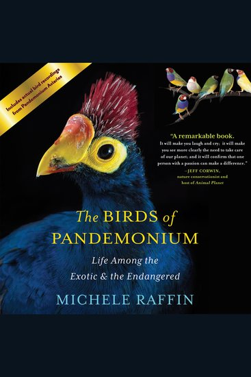 The Birds of Pandemonium - Life Among the Exotic and the Endangered - cover