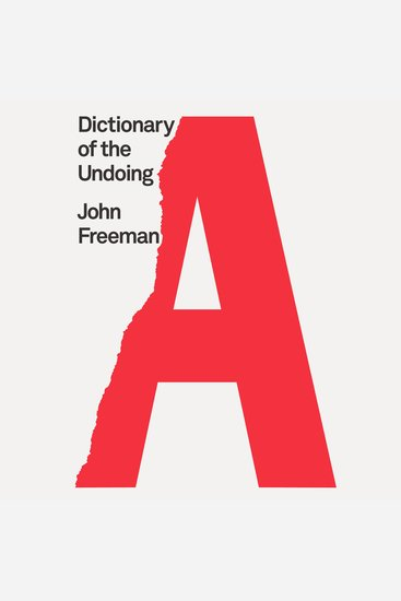 Dictionary of the Undoing - cover