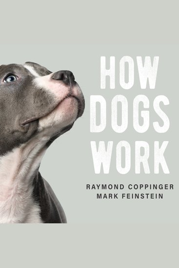 How Dogs Work - cover