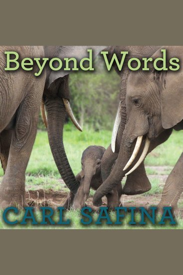 Beyond Words - What Animals Think and Feel - cover