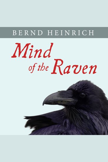 Mind of the Raven - Investigations and Adventures With Wolf-birds - cover