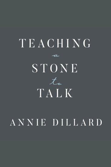 Teaching a Stone to Talk - Expeditions and Encounters - cover