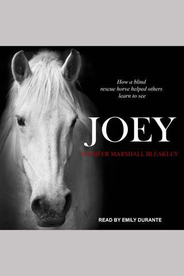 Joey - How a Blind Rescue Horse Helped Others Learn to See - cover