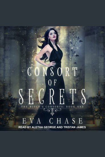 Consort of Secrets - The Witch's Consorts Book 1 - cover