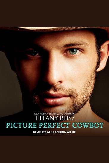Picture Perfect Cowboy - cover