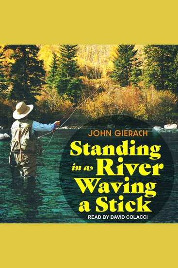 Standing in a River Waving a Stick - cover