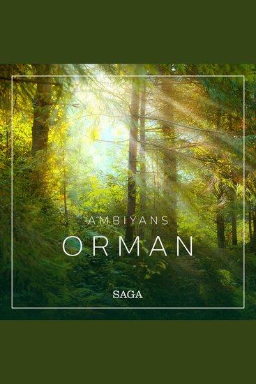Ambiyans - Orman - cover