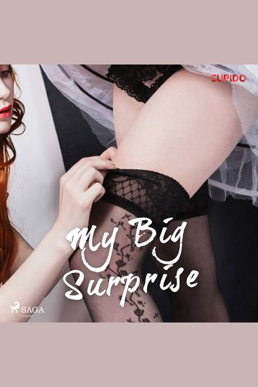 My Big Surprise - cover