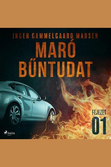 Maró bűntudat – 1 fejezet - Maró bűntudat - cover