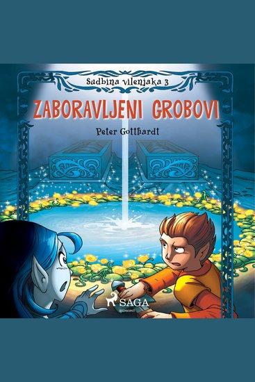 Sudbina vilenjaka 3: Zaboravljeni grobovi - Sudbina vilenjaka - cover