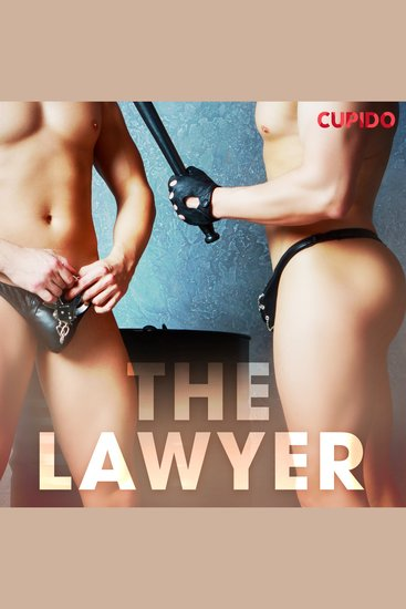 The Lawyer - cover