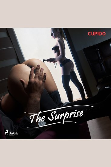 The Surprise - cover