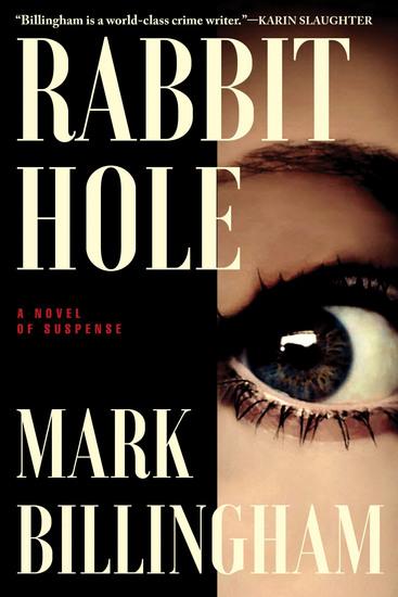 Rabbit Hole - A Novel of Suspense - cover