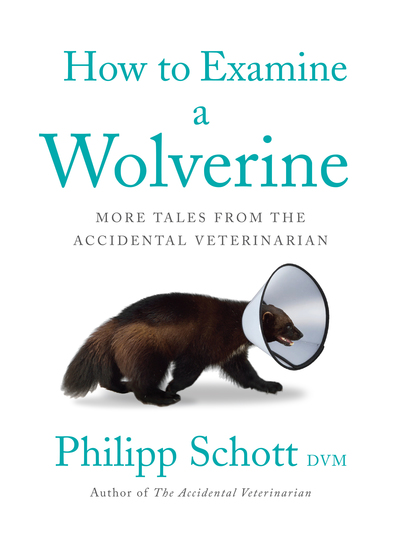 How to Examine a Wolverine - More Tales from the Accidental Veterinarian - cover