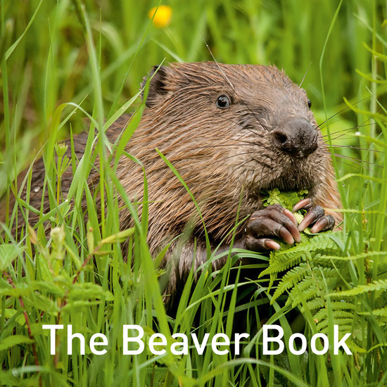 The Beaver Book - cover