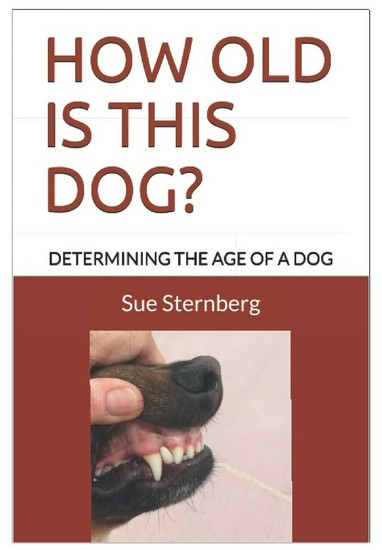 How Old Is This Dog? - Determining The Age Of A Dog - cover