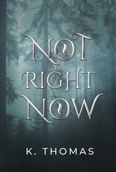 Not Right Now - cover