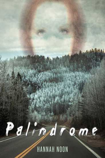 Palindrome - cover