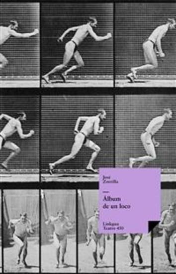 Álbum de un loco - cover