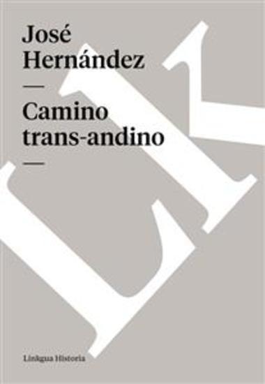 Camino trans-andino - cover