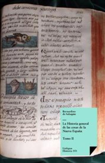 Historia general de las cosas de la Nueva España II - cover