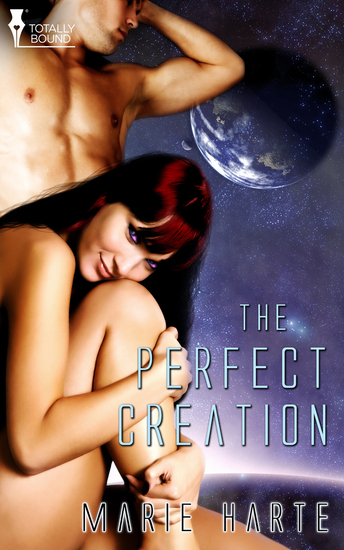 The Perfect Creation - cover