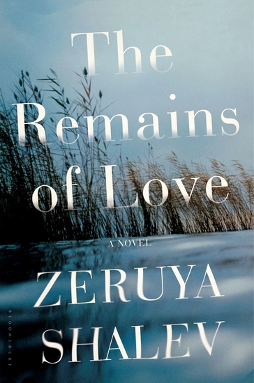 The Remains of Love - A Novel - cover