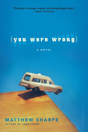 You Were Wrong - A Novel - cover