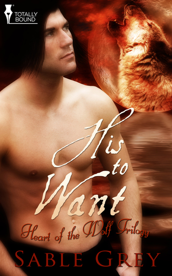 His to Want - cover